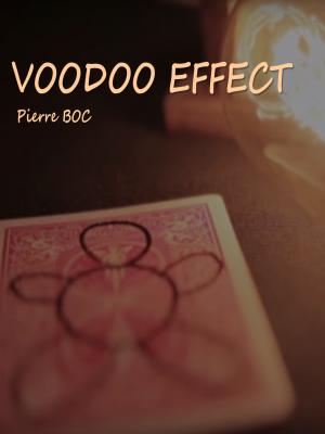 Image de couverture VOODOO EFFECT